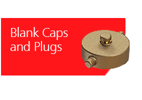 Blank Caps and Plugs